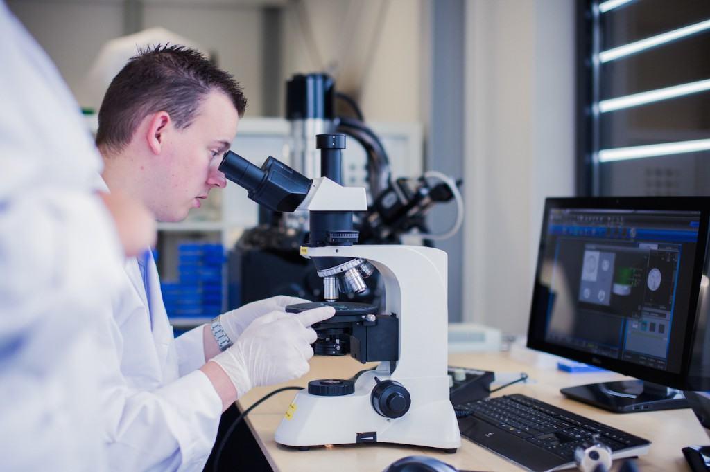 Asbest Analyse plm - einfaches Erkennen & Prüfen gefährlicher Substanzen
